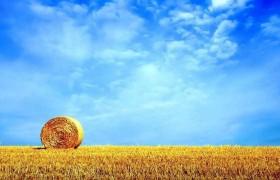 农作物秸秆综合利用——国外经验与中国对策