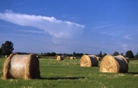 农业农村部:加快构建完善农业农村制度体系