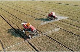 一季度农业农村经济运行总体平稳