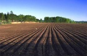 农业农村部部长唐仁健:全面推进乡村振兴 加快农业农村现代化